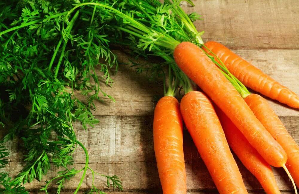 Морковь содержит огромное количество каротина, необходимого нам для синтезирования витамина А