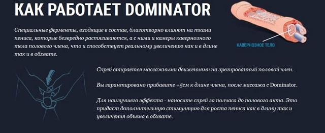 Принцип действия спрея Dominator