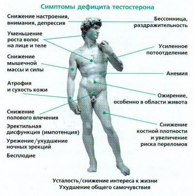 Гипергонадотропный гипогонадизм у мужчин анализ крови прикрепление к поликлинике иногородних в москве